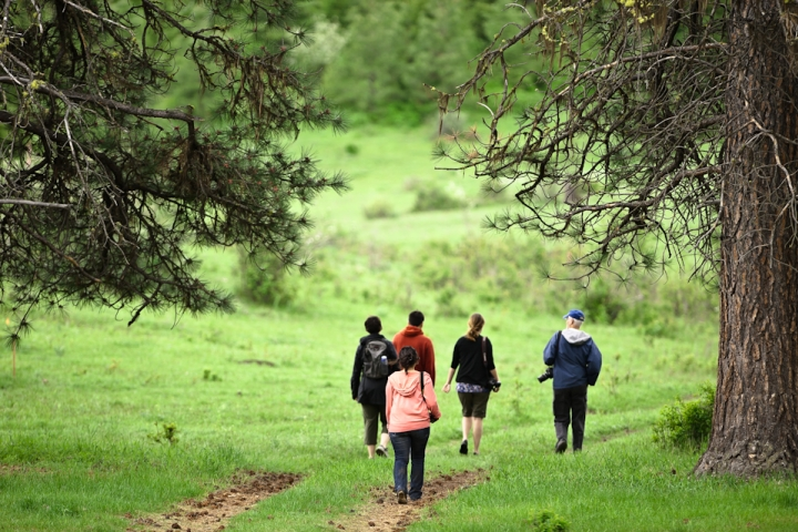 News21 fellows walk through the woods in Republic, Wa | AJ Chavar